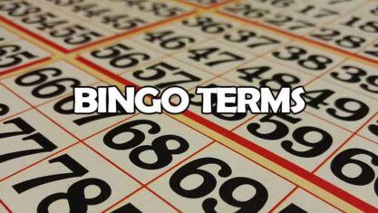 Bingo terms