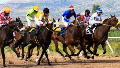 Recommended Bets For Bettors